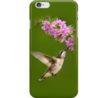 Touched Hummingbird iPhone Case/Skin