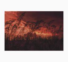 Sunset through the sea oats One Piece - Short Sleeve