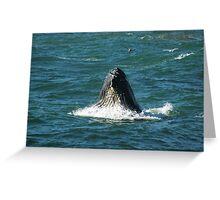 Humpback Whale Full Gulp Greeting Card