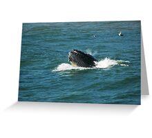 Humpback Whale Blowhole Greeting Card