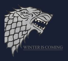 Winter is coming by Arrow310