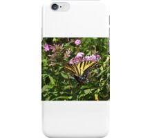 Butterfly and Flower Close-Up, Santa Fe, New Mexico iPhone Case/Skin