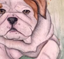 English Bulldog-scroll down to view more of my work Sticker