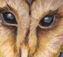 Majestic Owl Oil Pastel Sticker
