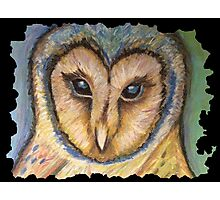 Majestic Owl Oil Pastel Photographic Print