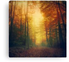 Autumn Morming Canvas Print
