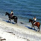 Riding along the Baltic Sea by jchanders