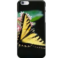 Swallowtail Butterfly and Milkweed Flowers iPhone Case/Skin