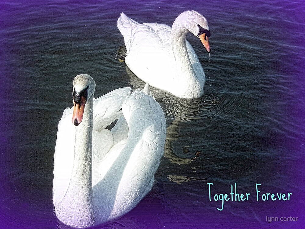 Together Forever by lynn carter