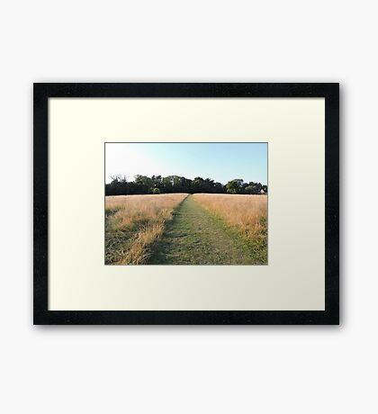Golden Grasses: Path of Dreams Framed Print