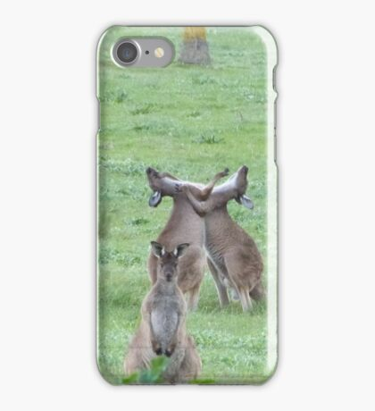 DON'T WATCH THEM! They're just being stupid! Western Grey Kangaroos, Mount Pleasant. iPhone Case/Skin