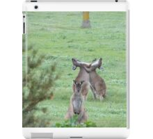 DON'T WATCH THEM! They're just being stupid! Western Grey Kangaroos, Mount Pleasant. iPad Case/Skin