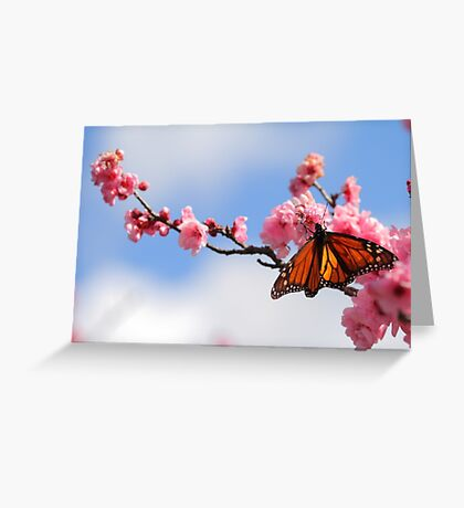 Spring On The Wing Greeting Card