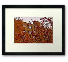 Autumn Mountain Ash - Oil Painting  Framed Print