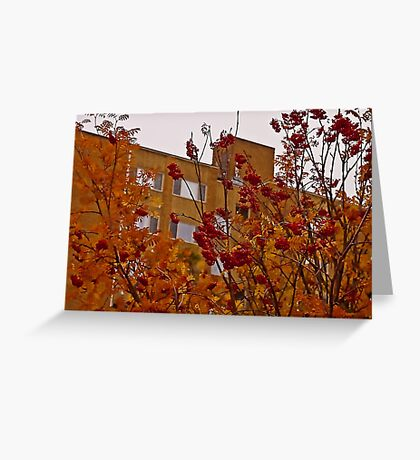 Autumn Mountain Ash - Oil Painting  Greeting Card