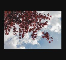 Japanese Maple Red Lace - Horizontal View Downwards Right Kids Tee