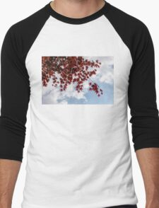 Japanese Maple Red Lace - Horizontal View Downwards Right Men's Baseball ¾ T-Shirt