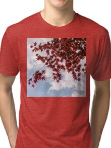Japanese Maple Red Lace - Horizontal View Downwards Left Tri-blend T-Shirt