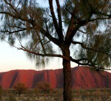 Uluru and the Tree Sticker