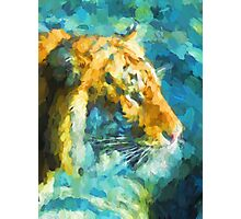 Tiger against the Blue Rock Photographic Print