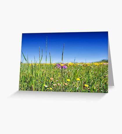 Spring Flower Meadows Greeting Card