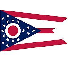 Ohio State Flag Photographic Print