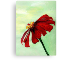 A Red Flower in Sharona's Dreams Canvas Print