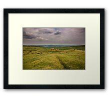 Dartmoor Framed Print