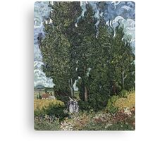 Vincent Van Gogh -  Cypresses 1898 Canvas Print
