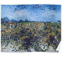 Vincent Van Gogh -  Green Vineyard, 1888 Poster