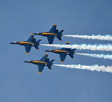 U.S. Navy Blue Angels by Eleu Tabares
