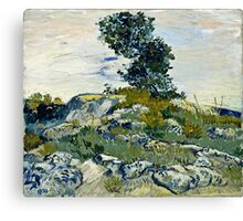 Vincent Van Gogh -  Rocks, 1888  Canvas Print