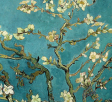 Blossoming Almond Tree Sticker