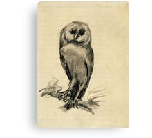 Vincent Van Gogh - Barn Owl Viewed From  Front, 1887 Canvas Print