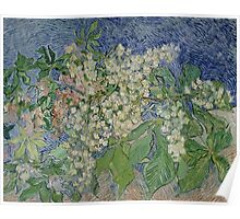 Vincent Van Gogh - Blossoming Chestnut Branches 1890 Poster