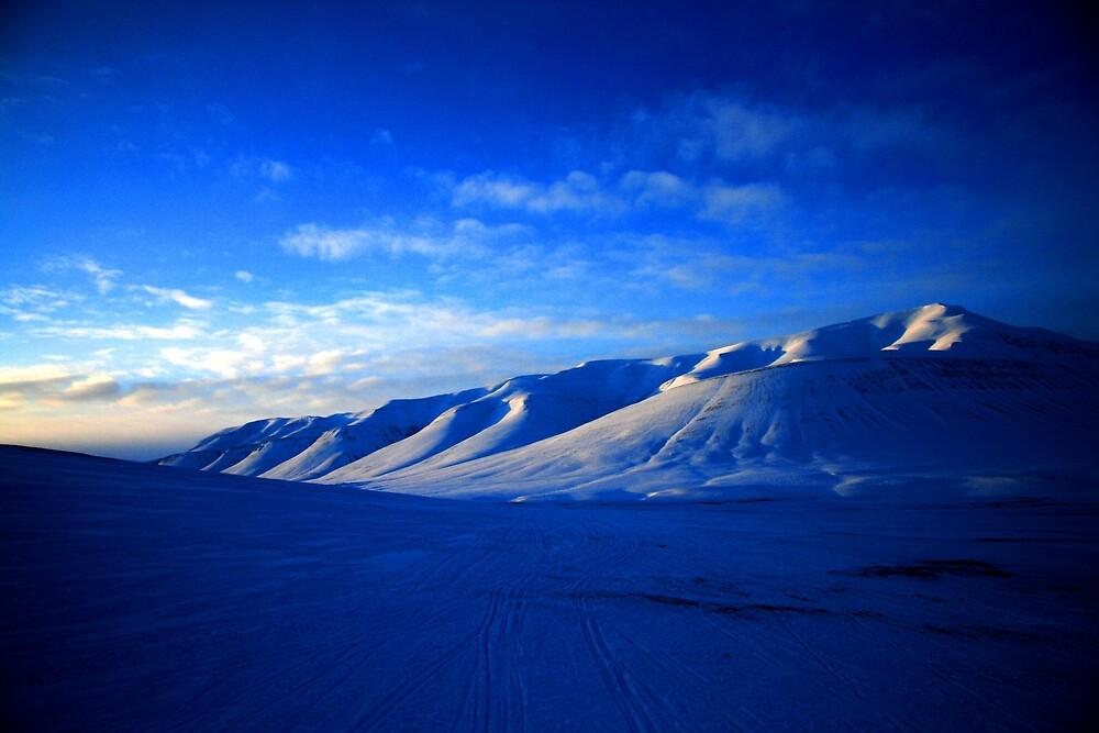 Svalbard Wilderness by David McGilchrist