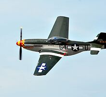 P-51 Mustang by Eleu Tabares