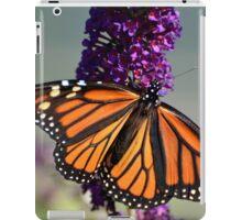 Wonderful Monarch iPad Case/Skin