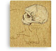Archaic Homo sapiens Canvas Print