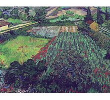 Vincent Van Gogh - Field With Poppies, 1889 Photographic Print