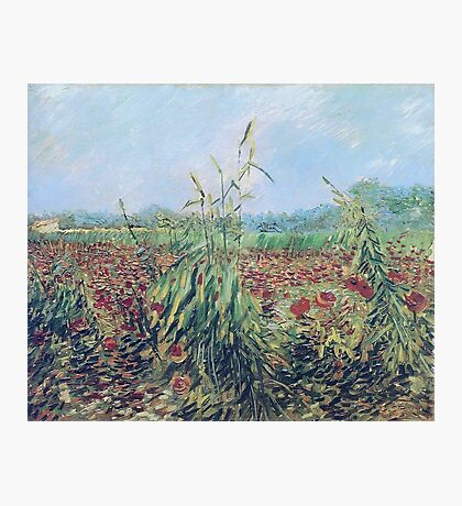 Vincent Van Gogh - Green Ears Of Wheat, 1888 Photographic Print