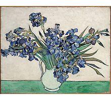 Vincent Van Gogh - Irises, 1890 Photographic Print