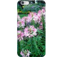 Pink Flowers in the garden iPhone Case/Skin