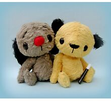 Handmade bears from Teddy Bear Orphans - Sooty and Sweep Photographic Print