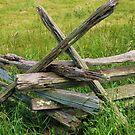 Aged Fence by Kenneth Hoffman