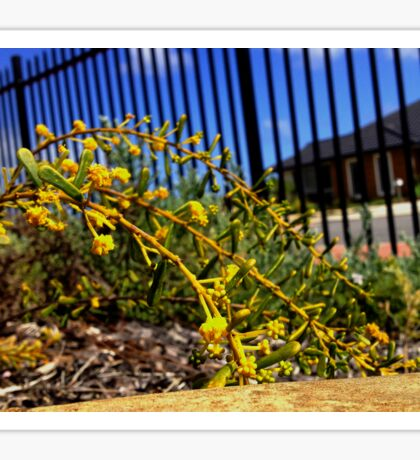 Yellow Plant Sticker