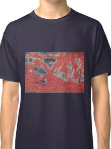 Autumn leaves in cold water Classic T-Shirt