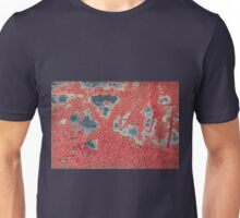 Autumn leaves in cold water Unisex T-Shirt