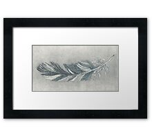 Feather etching study in grey Framed Print