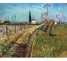 Vincent Van Gogh - Path Through A Field With Willows, 1888 Photographic Print